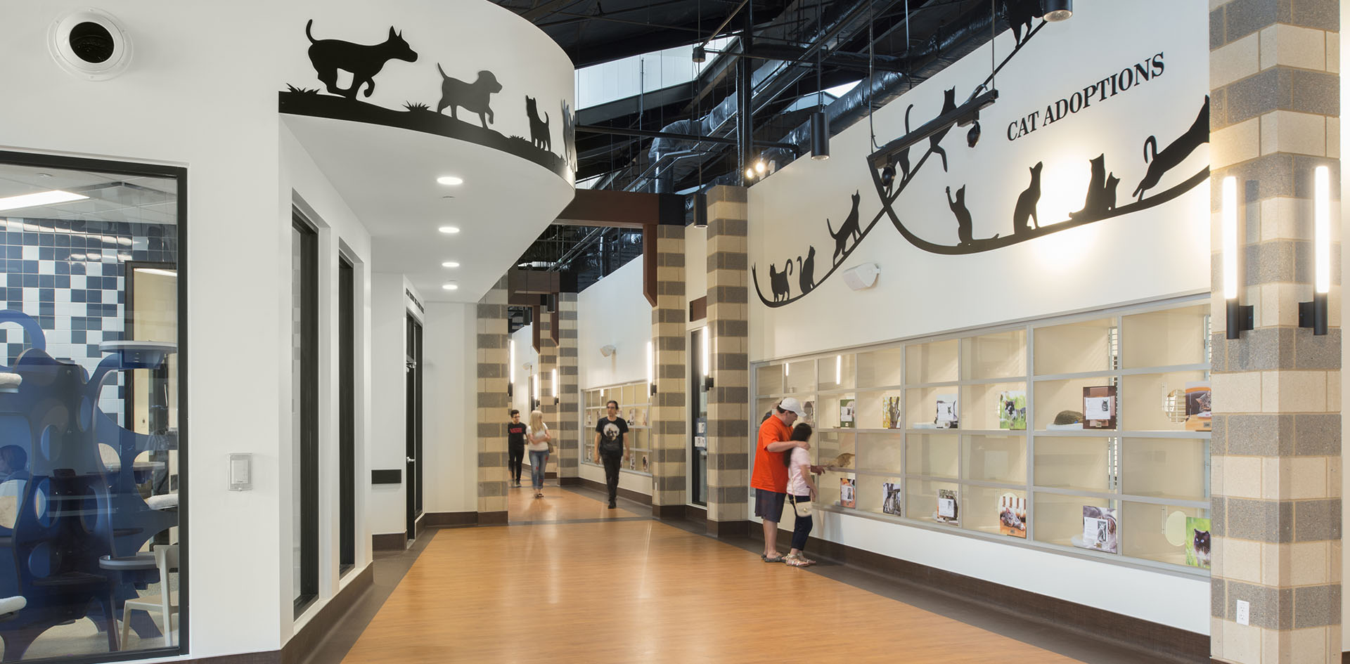 7  HSPCA state of the art animal shelter and wildlife center by Jackson & Ryan Architects